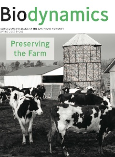 Spring 2009 Cover