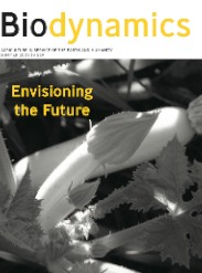 Summer 2009 Cover