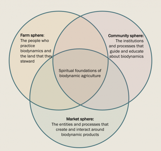 Spheres of the biodynamic community