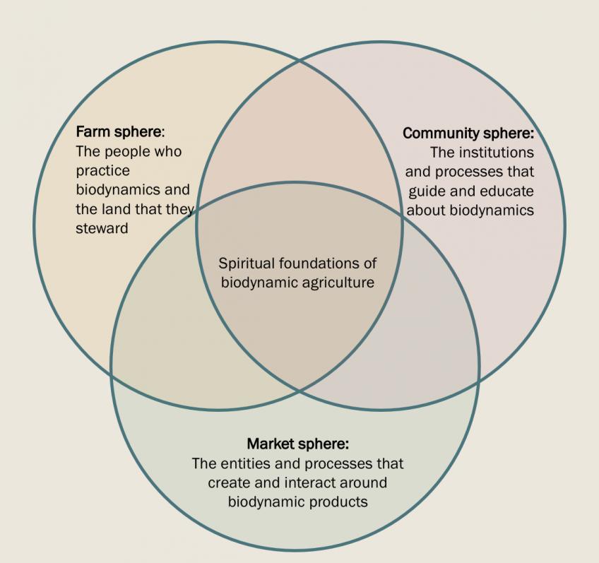Spheres of the biodynamic community