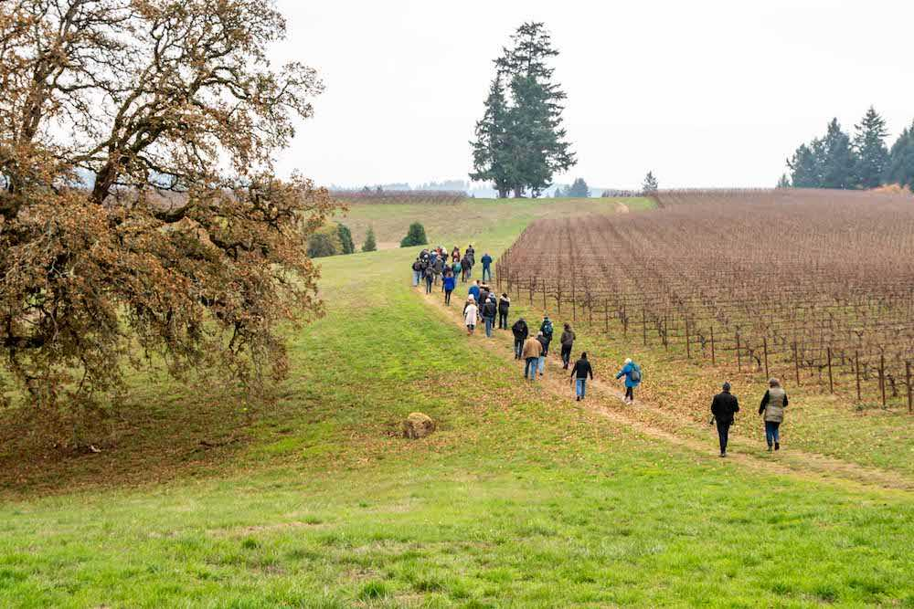 Field day at Soter Vineyards' Mineral Springs Ranch