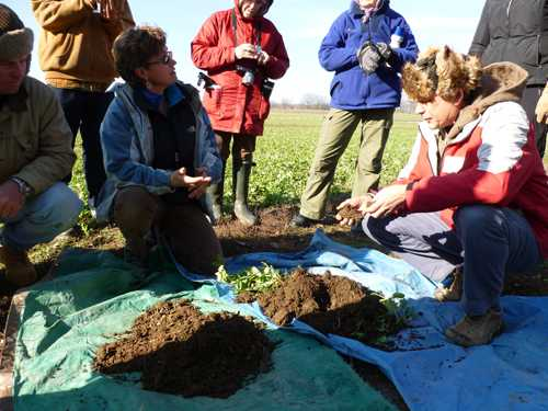 Deb Crockett demonstrates the difference between biodynamic and conventional soils