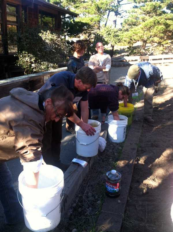 Stirring biodynamic preparations